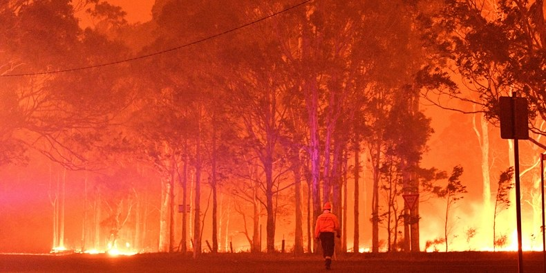 Australian Bushfires: Celebrities Are Finally Starting to Speak Up